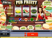 Roxy Palace Casino: Pub Fruity
